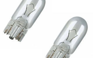 Автомобильная лампа W5W: виды, правила выбора, рейтинг
